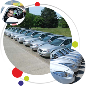 filo car rental